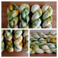 'Summer Meadow' Vesper MCN Sock yarn